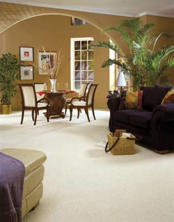 Carpet Flooring Hilo HI